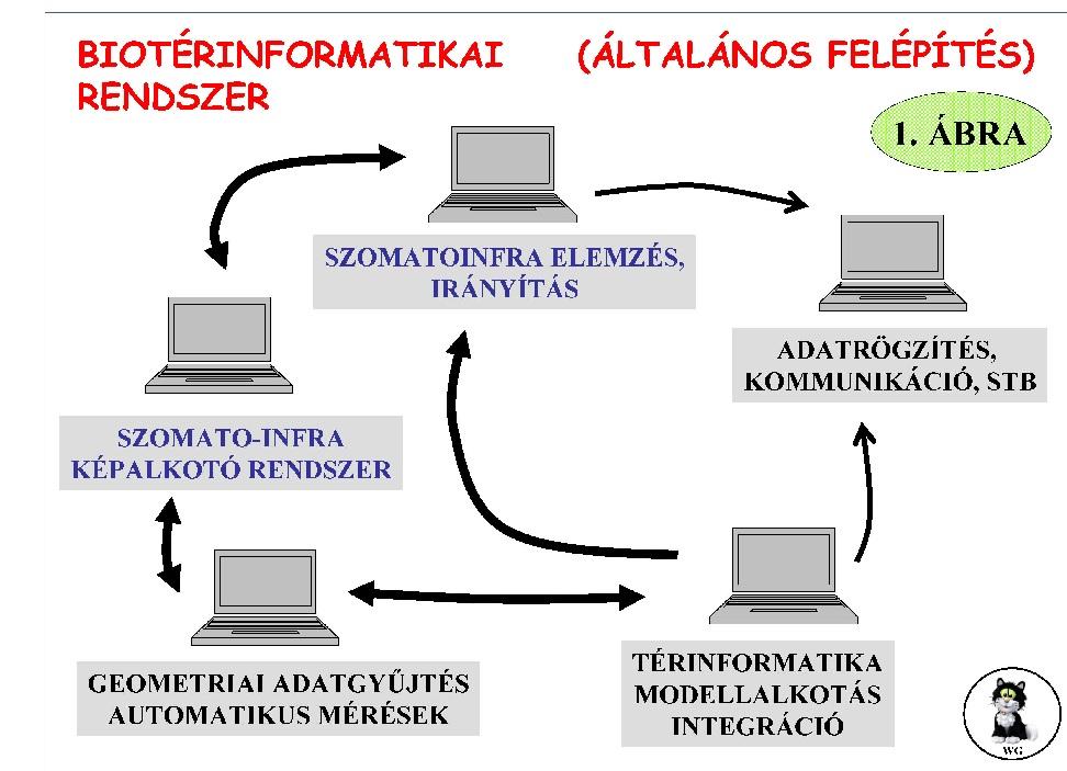 terinfo_001